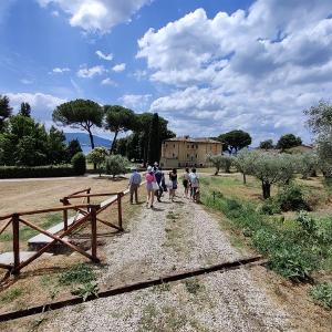 Walk & Wine all'Isola Polvese