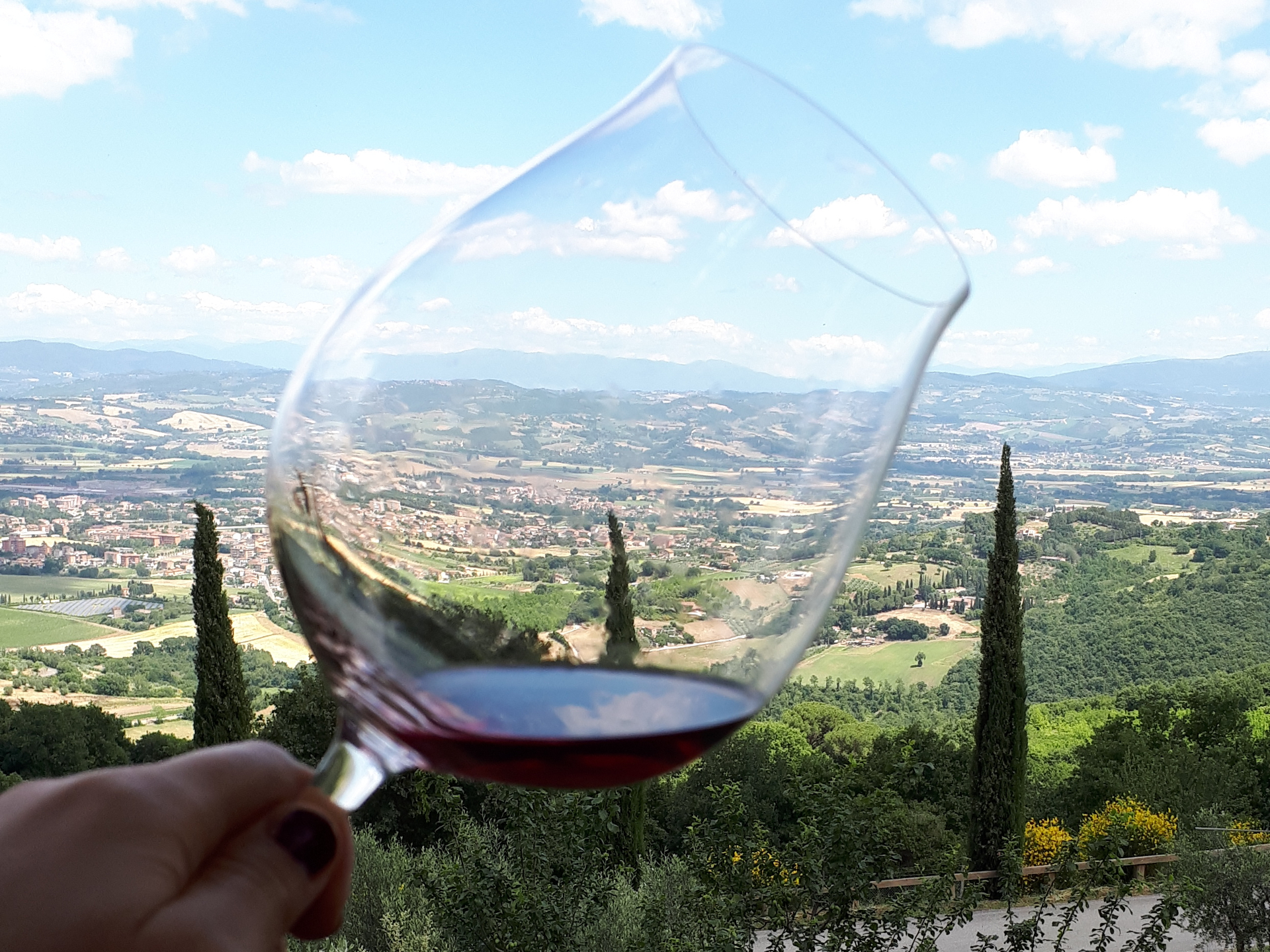 La nascita di Umbria Wine Club